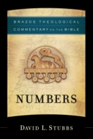 Numbers (Brazos Theological Commentary on the Bible)  by David L. Stubbs